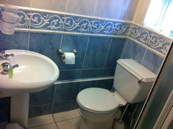 The Ashleigh: Sink and toilet too close to each other
