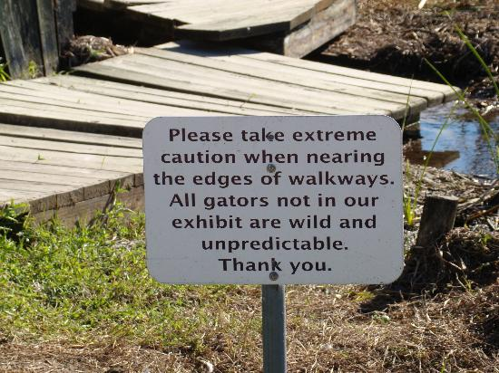 "Sawgrass Recreation Park: ""Warning Signs"""