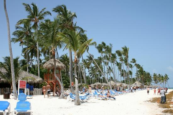 Natura Park Beach - EcoResort & Spa: Plage