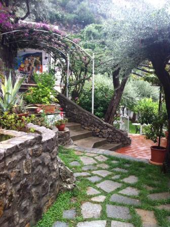La Maliosa d'Arienzo: property