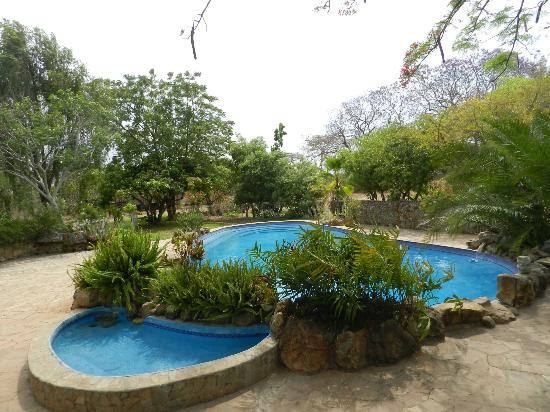 Musangano Lodge : Pool
