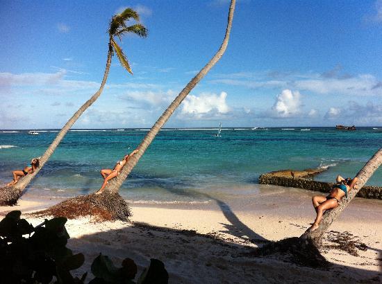 Club Med Punta Cana: Paradise