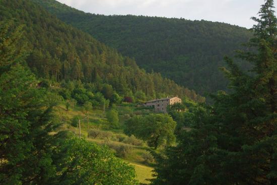 Agriturismo Il Castello: Montanhas ao redor