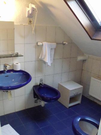 Hotel Albergo: Il bagno...funzionale!