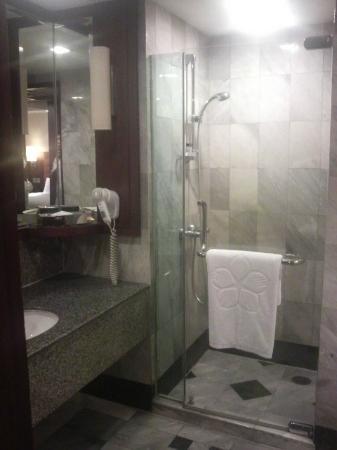 Rembrandt Hotel Bangkok: シャワールーム・洗面台