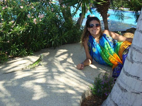 Coche Paradise Hotel Isla Margarita: Zona de Pileta