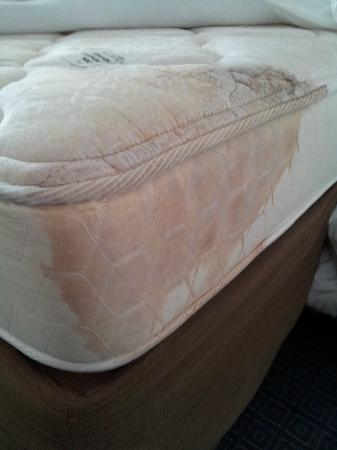 Essington, PA: Blood? Stained Mattress