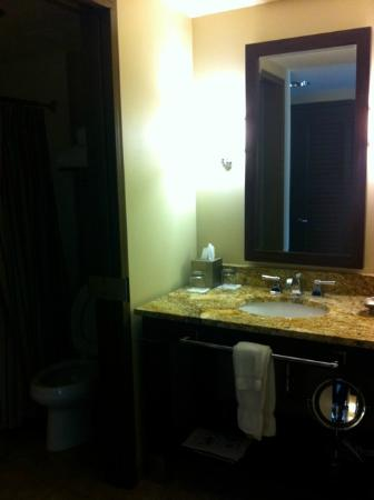 AT&T Hotel and Conference Center: Sink area