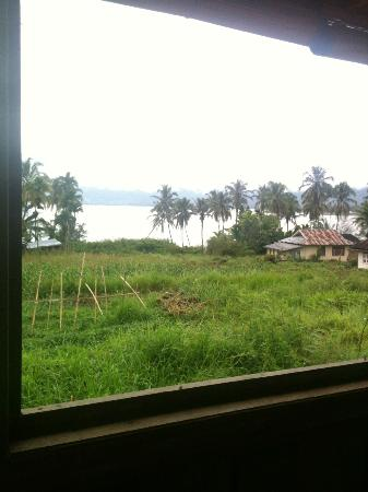 Lake Maninjau: lakeview