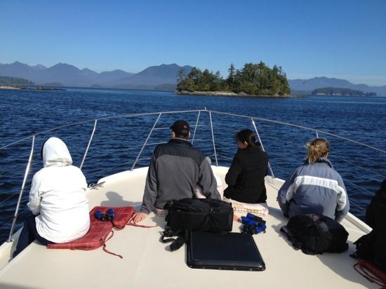 Archipelago Wildlife Cruises: spent the day here