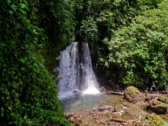 Arenal Observatory Lodge & Spa: Waterfall within the property trails