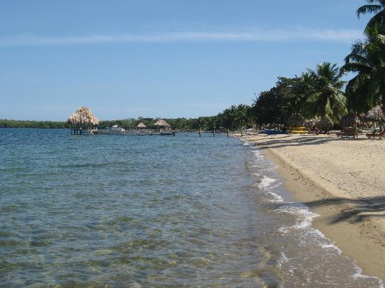 Belizean Dreams Resort: Looking south on the beach
