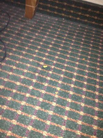 Howard Johnson by Wyndham Albuquerque Midtown : crumbs on the carpet