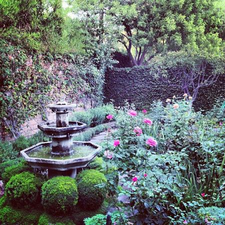 Suzanne's Cuisine : Lovely English Garden at Suzanne's