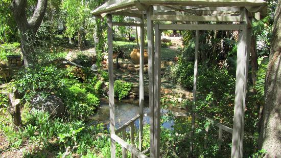 Kruger House Guest Cottages: Lake