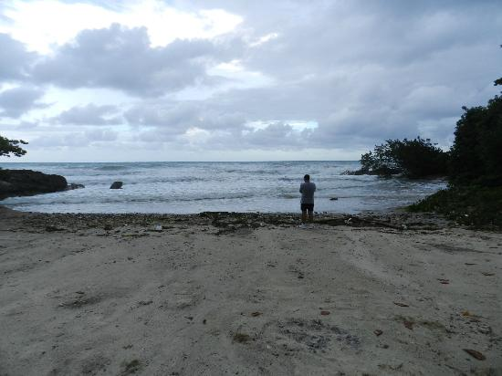 Grand Palladium Jamaica Resort & Spa: garbage on the beach