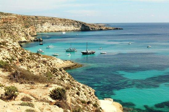 Baia Dei Conigli Isola Di Lampedusa Picture Of Spiaggia Dei