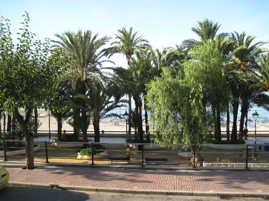 Hotel Montemar: Elche Parque, white doves, promenade, lovely place.