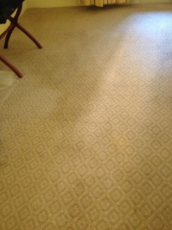 تاج بوسطن: not a shadow. huge stain. 