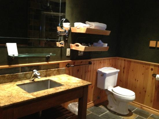 بافالو ماونتن لودج: Bathroom sink 