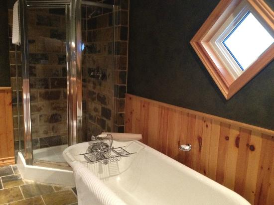 Buffalo Mountain Lodge: Tub and shower