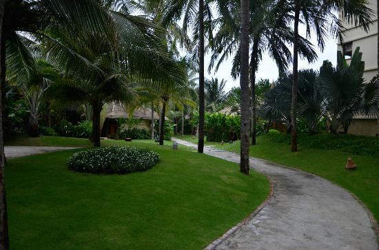 Terracotta Resort: Территория отеля