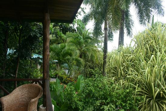 Falls Resort at Manuel Antonio: View off the balcony, very cool garden view!