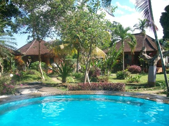Oka Kartini Bungalow: pool area