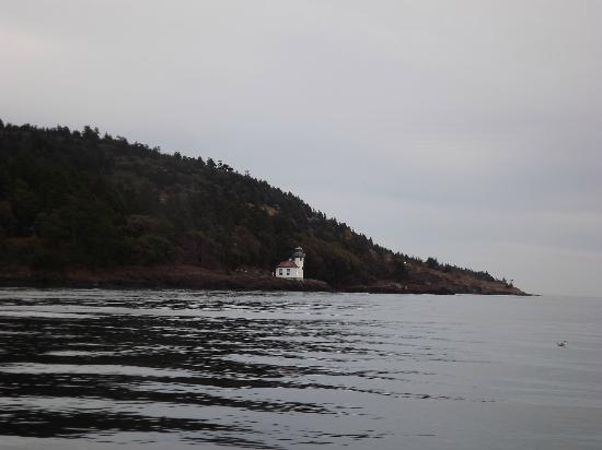 Maya's Legacy Whale Watching: Lime Kiln Lighthouse from the Peregrine