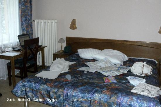 Art Hotel Laine : Pokój