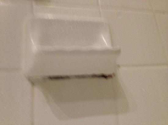 El Tropicano Riverwalk Hotel: mold under soap dish