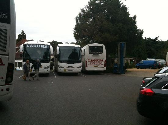 Laguna Hotel: Buses in parking area