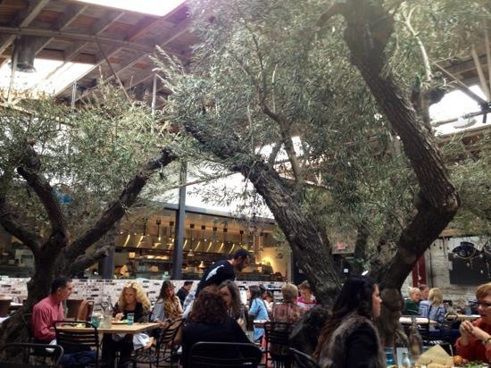 Herringbone La Jolla: kitchen