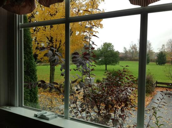 MapleStone Inn: Damp days don't diminish the beauty.