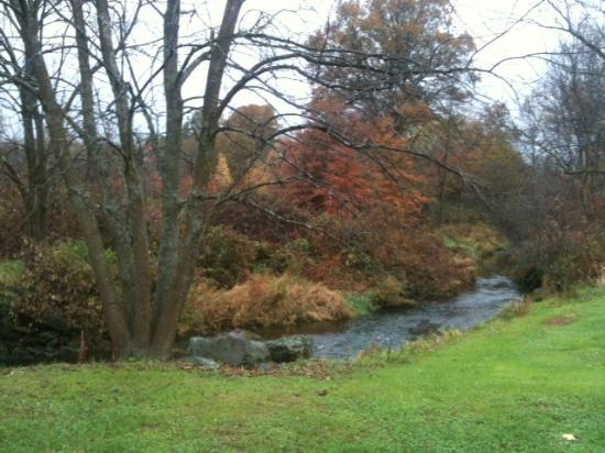 MapleStone Inn: The creek that flows in back of the barn