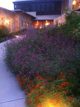 Lake Austin Spa Resort: This is on your walk in to the spa