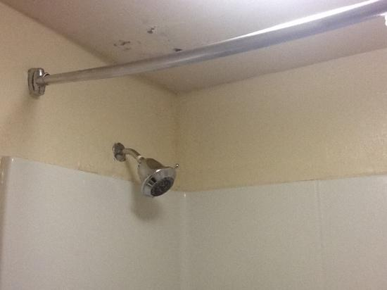 Days Inn & Suites Savannah Midtown: mould in bathroom and broken shower rod