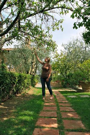 Villa Le Torri: Le Torri Garden