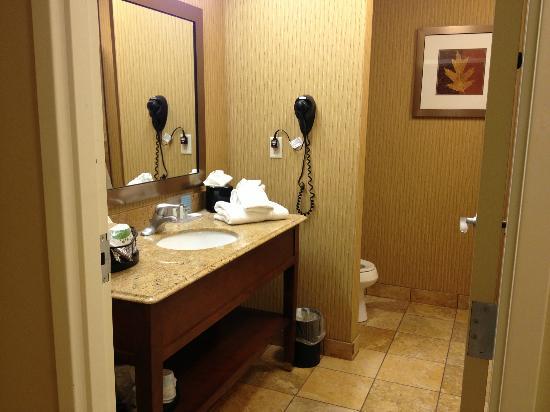 Hampton Inn & Suites McAllen: Big bathroom