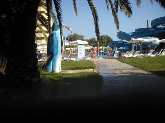 Avsallar, Turquía: бассейн