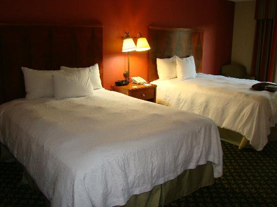 Hampton Inn & Suites By Hilton Williamsburg-Central: Comfortable beds