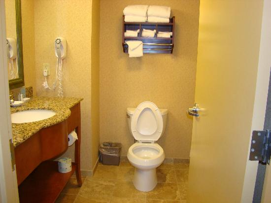 Hampton Inn & Suites By Hilton Williamsburg-Central: Bathroom