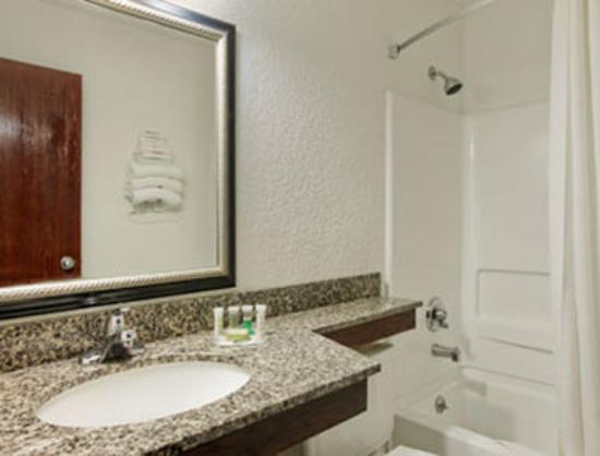 Super 8 Roseville/Detroit Area: Bathroom