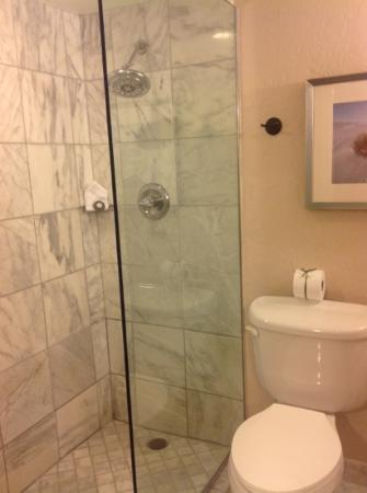 The Scott Resort & Spa: love the shower
