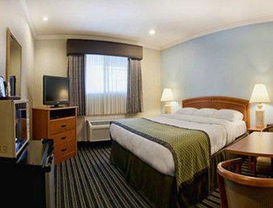 Hotel Parmani: Standard King