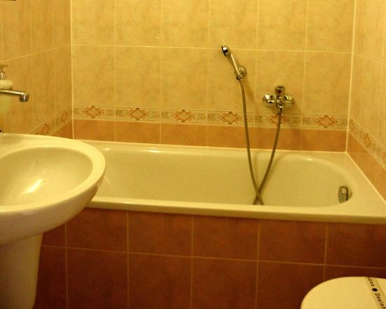 Hotel Grand : Guest Room Bathroom