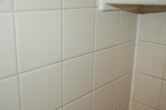 Mirabeau Park Hotel: mold in grout