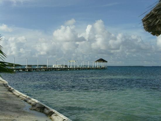 Turneffe Island Resort: The pier
