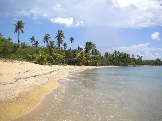 Hacienda Tamarindo: Beach on South West Vieques