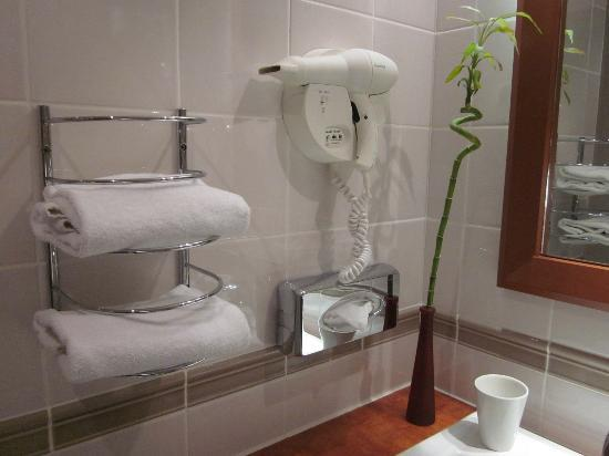 Hotel Crowne Plaza Lyon - Cité Internationale: Bathroom modern and clean and lots of room